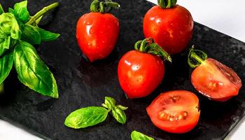 סלט עגבניות - רוני שחר